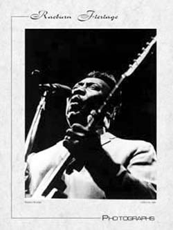 Muddy Waters poster; photograph by Raeburn Flerlage